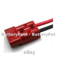 Delta Q Charger 24 Volts 25 Ampères 24v Palette Jack Fork Lift Floor Scrubber